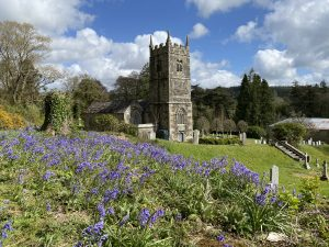 St Peter's at bluebell time