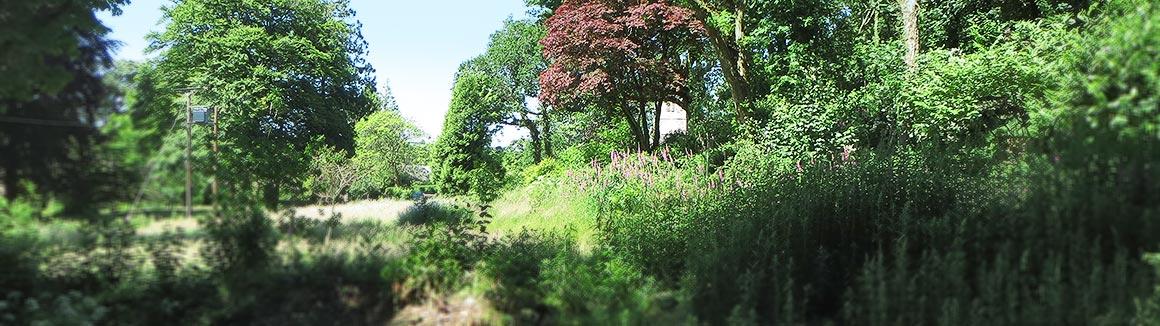 Forgotten Garden Special Place