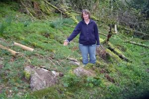 Beverley Stemson Finding The Original Lewtrenchard Holy Well