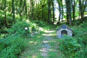 Lewtrenchard Holy Well Restored